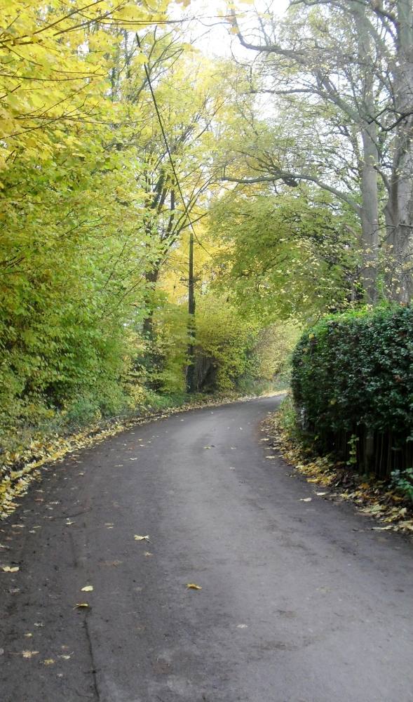 Enid's Inspiration: Bourne End in the Autumn (3/6)