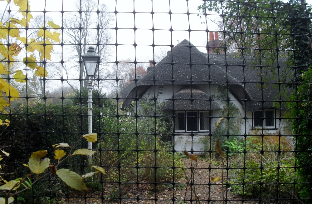 Enid's Inspiration: Bourne End in the Autumn (2/6)