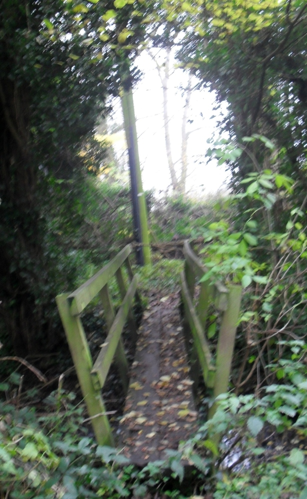 Enid's Inspiration: Bourne End in the Autumn (4/6)