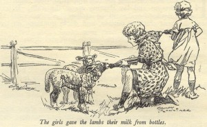 1 st edition Illustration by Harry Rountree