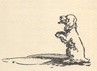 "Scamper in ""The Secret Seven"" drawn by George Brook"