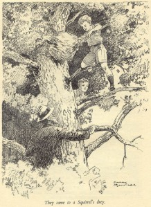 Climbing to the Squirrel's Drey by Harry Roundtree