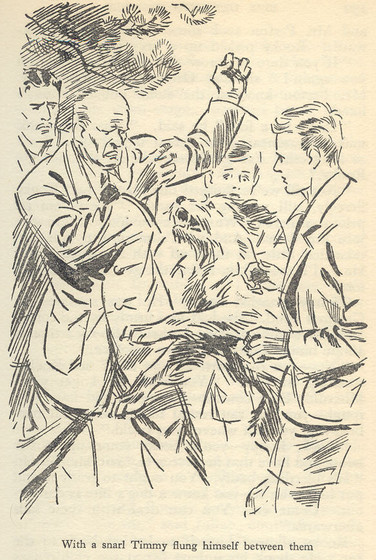 Timmy attacks Rooky  by Eileen Soper in Five Get Into Trouble.