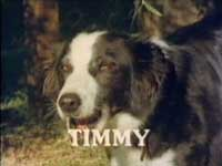 Timmy a.k.a Toddy Woodgate from the 70's TV series.