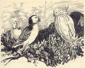 Huffin, Puffin and Kiki
