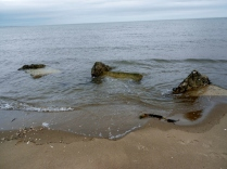 WWII coastal defences at Tentsmuir Beach