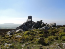 Up on the Stiperstones.