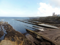 The sea from St Andrews Castle