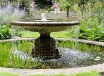 The water garden centre piece