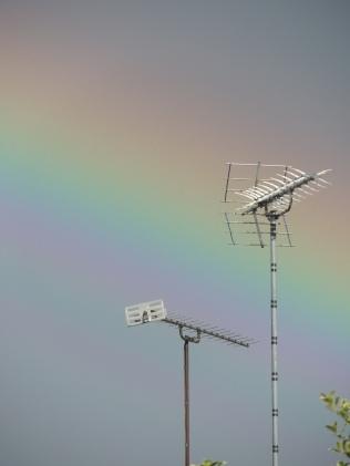 Rainbow Copyright Stephanie Woods