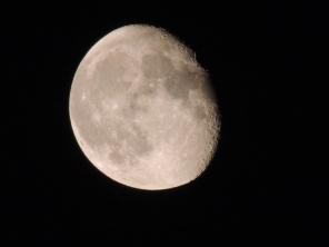 The Moon Copyright Stephanie Woods