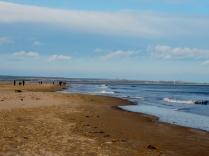 Tenstsmuir beach