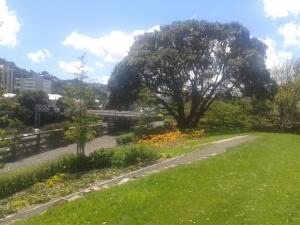 Corinna's local park