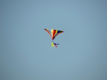 Kite, St Andrews