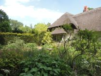 Front garden of Old Thatch