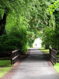 Monike Park
