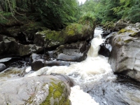 River Braan, Dunkeld