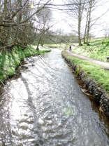The Burn flowing into Craigmill Den