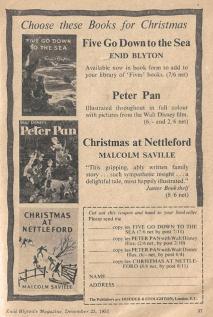 Christmas advert (Copy)